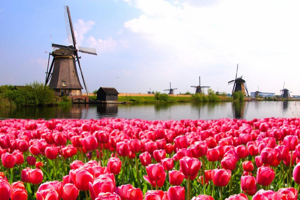 Εκδρομή Ηράκλειο – Άμστερνταμ